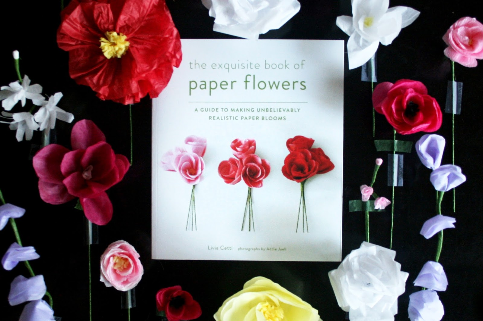 The Exquisite Book Of Paper Flowers Erika Sargent